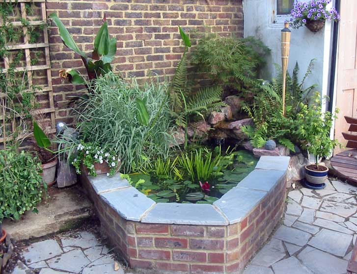 Hanover ponds brighon and hove previous pond design work for Small garden with pond design